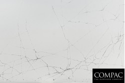 Cobweb (M)