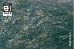 Verde Pannonia